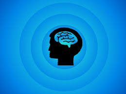 Executive Function and the Importance of Study Skills